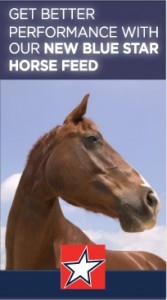 2in horse img 167x300 Horse Feeds