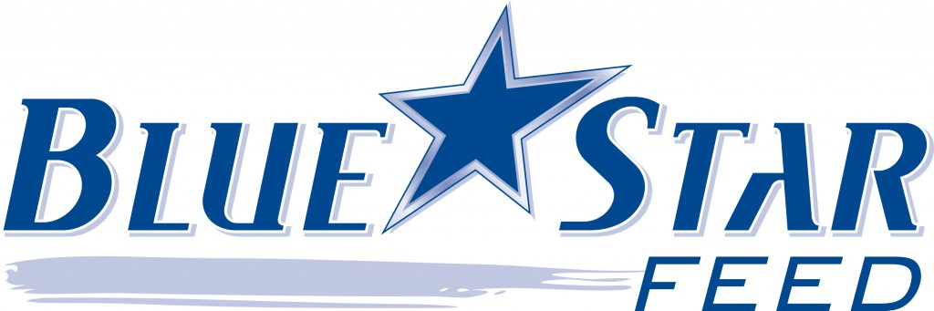 Blue Star Logo 1024x341 Welcome to Steinhausers