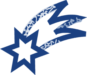Star logo 300x259 Blue Star Feeds