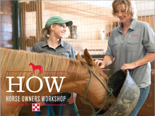Steinhauser's Horse Owner's Workshops