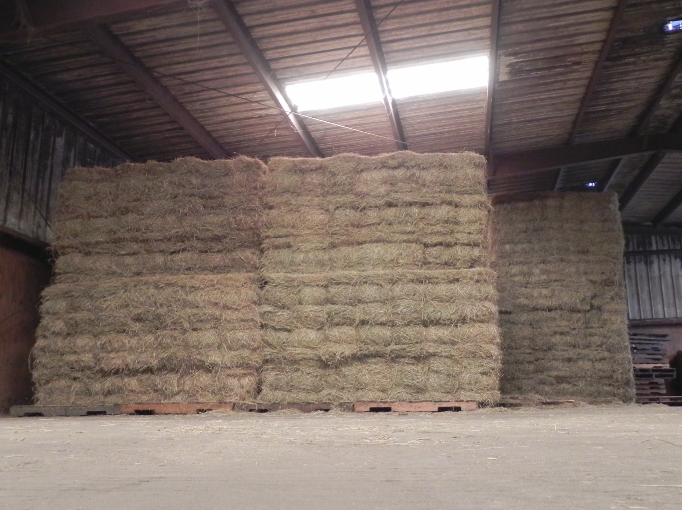 Southeast Texas Hay Supply Steinhauser S