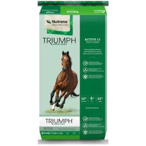 Triumph Active 10 Textured Horse Feed