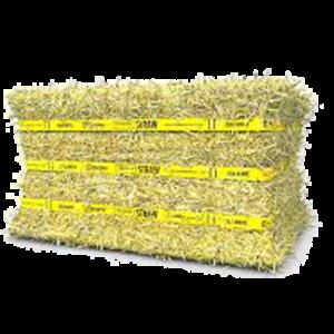 Standlee Certified Compressed Hay