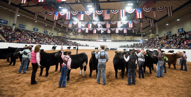 2018-2019 Livestock Show Dates